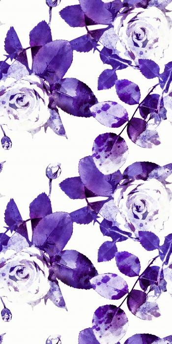 PRP_Rose