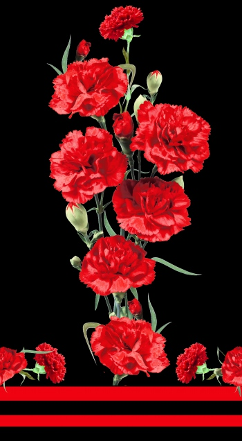 Realistic Red Carnations
