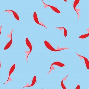 Red Koi Fish