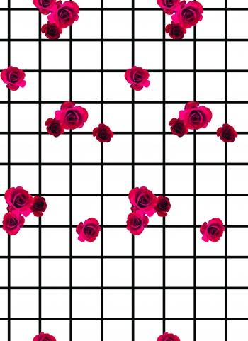 Romance on grids.