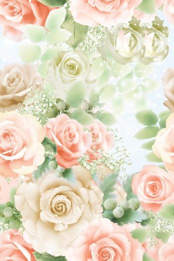 Rose peony flower
