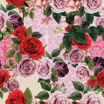 Roses & Pink Damasks