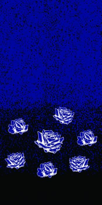 Roses_7788