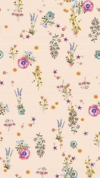 Sensitive wildflowers