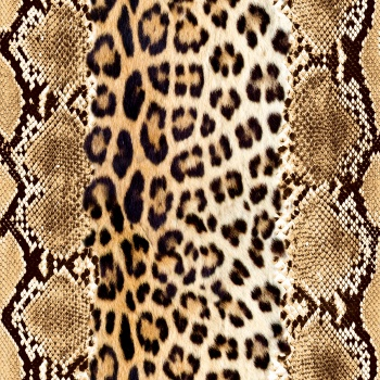 Snake and Leopard