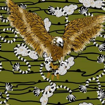 Steppe Eagle