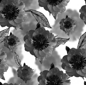 tea rose flowers.