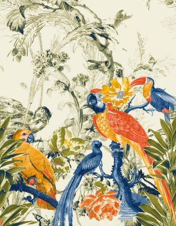 Toucan's Paradise