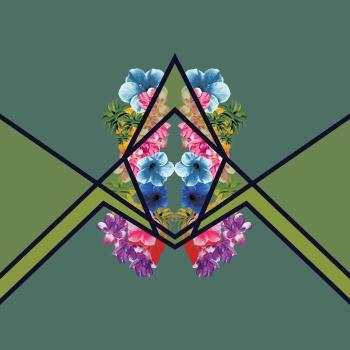 Tropical and geometric