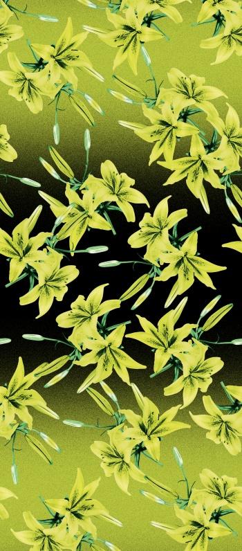 Wild Neon Lilies